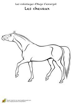 Dessin d'une posture de cheval  à colorier                                                                                                                                                     Plus