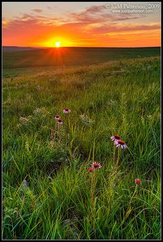 Land of Sunsets / Tallgrass Prairie National Preserve