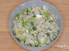Recipe: Homemade Dog Food with Cottage Cheese Diabetic Dog Treat Recipe, Dog Treat Recipes, Dog Food Recipes, Food Tips, Cake Recipes, Homemade Dog Cookies, Homemade Dog Food, Healthy Eating Tips, Healthy Nutrition