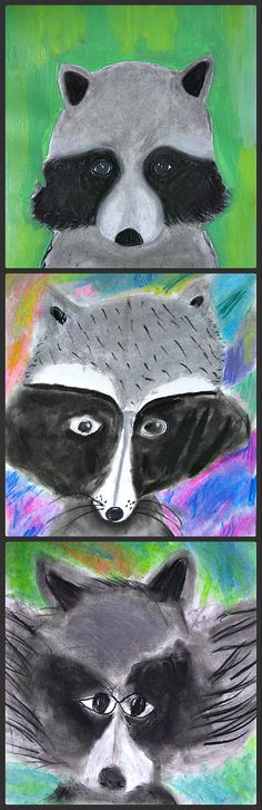 These Raccoon Portraits were drawn in charcoal and pastel chalks by a group of 4th grader students, they created a remarkable unique effect dont you think.