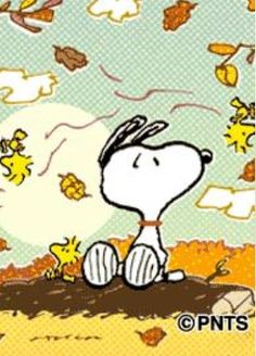 101 Best Snoopy Peanuts Fall Images Frases Peanuts Comics