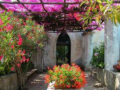 Villa Rufolo garden, Ravello (Amalfi Coast), Italy