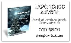The Christmas story through nature-based science lessons. A fresh approach to Advent! Christmas Activities, Christmas Crafts, Christmas Decorations, Christmas Ideas, A Christmas Story, All Things Christmas, Charlotte Mason Curriculum, Kindergarten Curriculum, Nature Study