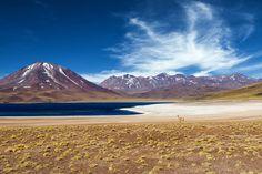 Situées au Chili, ces lagunes altiplaniques reflètent la puissance des montagnes