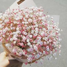 Flower Aesthetic, Pink Aesthetic, My Flower, Pretty Flowers, Bunch Of Flowers, Planting Flowers, Flower Arrangements, Floral Wreath, Bloom