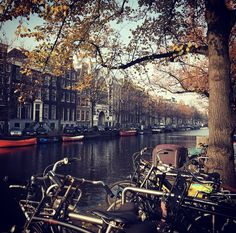 ¡Hola desde Amsterdam, Lovers!  Que ganas tenía de venir.❤️❤️❤️  ¡Un beso gigante! ¡Feliz Día!  LOVE #love #amor #Amsterdam #Holland #Holanda #canales #travel #travelgram #travelling #wedding #weddingplanner #destinationweddingplanner #destinationwedding #happy #feliz #Cádiz #equipo #friends #deco #decor #handmade #relax
