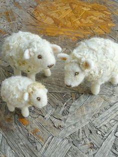 I love sheep!