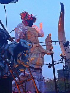 Galway Macnas Parade 2013 Fair Grounds
