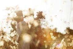 """""""Hoje eu queria ser um gato, desses que têm sete vidas. E com cada uma delas eu te amaria e morreria de amor sete vezes.""""    ❤️❤️❤️❤️❤️❤️❤️❤️  siga: @hevelyngontijo    @imagebuzz    Acesse nosso blog! Dicas exclusivas para noivas! www.hevelyngontijo.com.br/blog    #noiva #ensaiocasal #smiles #casamento #love #noivo #weddingcake #prewedding #instawedding #instawed #bridetobe #wedding #destinationwedding #weddingday #weddingdress #amor #hevelyngontijo #ensaiodecasamento #groom #romance #bride…"""