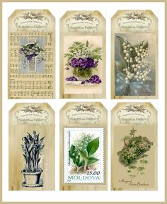 Imprimolandia: Etiquetas de botánica