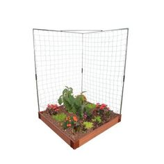 Frame It All - 4 ft. Plastic Veggie Wall Expandable Trellis System - Contains new and improved connectors. Durable stainless-steel and nylon construction. Elevated design allows easier plant care with less bending. Raised Garden Beds, Raised Beds, Frame It, Frames On Wall, Wall Trellis, Garden Trellis, Flowering Vines, Plant Care, Container Gardening