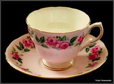Colclough Bone China Teacup and Saucer Set (Pattern 8239) Made in England