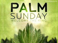 19 best palm sunday images on pinterest easter palm sunday and palm sunday 2016 greetings m4hsunfo