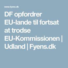 DF opfordrer EU-lande til fortsat at trodse EU-Kommissionen | Udland | Fyens.dk