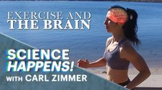 """""""Exercise and the brain"""" is such an important video for EVERYONE to watch! :) It gives irrefutable evidence that exercise is one of the very BEST things we can do for our brains! So do yourselves a huge favor and do some form of exercise every single day! :)"""