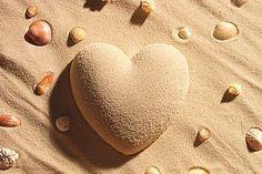 Hearts & Shells