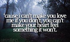 Bonnie Raitt- I Can't Make You Love Me