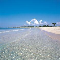 Playa de es Caragol. Mallorca