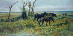 Cavalli in pastura - Fattori