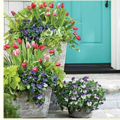 Garden ideas from Southern Living