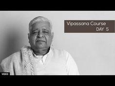 10 Day Vipassana Course - Day 5 (English) - YouTube Vipassana Meditation Retreat, Meditation Practices, Mindfulness Meditation, Guided Meditation, Meditation Youtube, Mindfulness Exercises, How To Stay Motivated, Spiritual Awakening, 10 Days