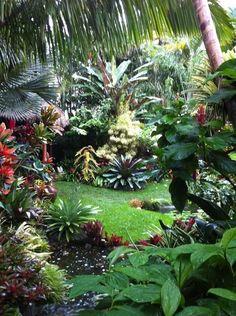 Tropical garden landscaping inspiration