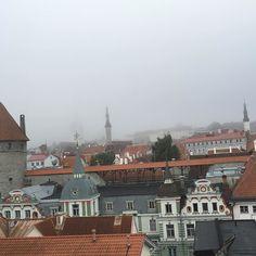 曇っていても風景が素敵 #エストニア 視察も #最終日   #朝 から #曇り だけど #景色 最高