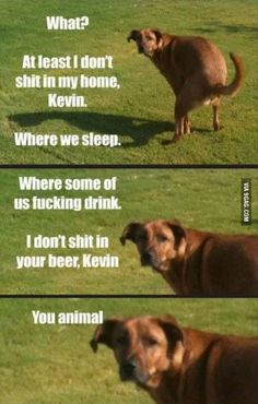 Dog, Memes, Funny: what? At least I don't shit in my home, Kevin. Where we sleep. Where some of us fucking drink. i don't shit in your beer, Kevin You animal Funny Animal Memes, Dog Memes, Funny Dogs, Funny Animals, Animal Funnies, Hilarious Memes, Memes Humor, Adorable Animals, Animal Captions