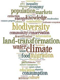 Environmental issues word cloud