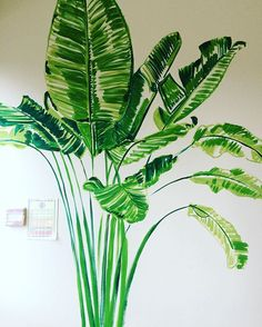 I so love the freedom of starting a new mural.... large blank wall and then..... possibility 🌴🌵🌱🌵🌴 Happy Saturday ❤️ Local deliveries this morning and last day Christmas post Mon 19th Dec from my shop www.lucytiffneyshop.com #green #nature #bananapalm #tropical #bringingtheoutsidein #mural #painting #paint #artist #art #murals #instagood #instagram #interior #interiordesign #inspiration #garden