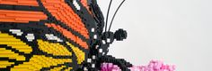 Nature Connects: Art with LEGO® Bricks at MOBOT from May 24th - Sept 7th; admission $10-14 for adults