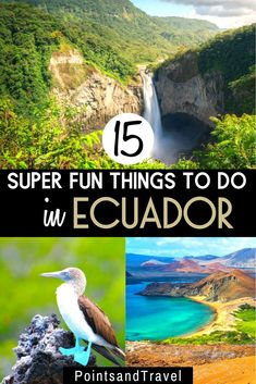 15 Of The Best Things To See & Do in Ecuador My ultimate Ecuador Travel Guide! Here are 15 super fun things to do in Ecuador. Ecuador in one of the smallest South American countries, but it has so many things to see and do South America Destinations, Top Travel Destinations, South America Travel, Places To Travel, Nightlife Travel, Time Travel, Cuenca Ecuador, Peru Ecuador, Ecuador Travel