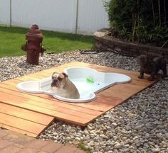 Dog pool...super cute and my boys would love it!