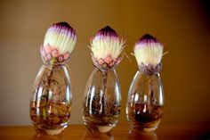 Floral centerpieces madeup of purple, light yellow, and pink proteas - photo by South Africa based wedding photographer Greg Lumley
