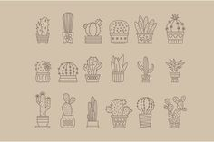 Set of vector cactus icons  by TopVectors on @creativemarket