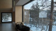 vidvei&william Arkitekter Visit Norway, Young Designers, Skiing, Cabin, Windows, Architecture, Modern, Inspiration, Instagram