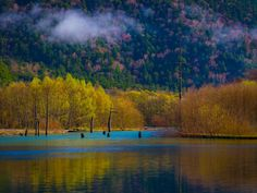 Kamikochi, Adele, River, Outdoor, Outdoors, Outdoor Games, Outdoor Living, Rivers