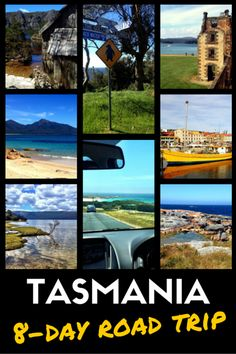 Road Trip in Tasmania: Self-Drive Itinerary for Nature Lovers Tasmania Road Trip, Tasmania Travel, Melbourne, Sydney, Places To Travel, Travel Destinations, Places To Go, Great Barrier Reef, Australian Holidays
