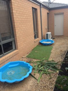 As this gets a bit of sun maybe a veggie wall garden? Ask James. Also clean out Sand from she'll and put away over winter, clean out water she'll and put away if Dani's okay with that and just have a smaller water bowel or small solar powered water feature out here.  Also get the trailer, wheelbarrow from mums and take all the green waste away here and round the back.