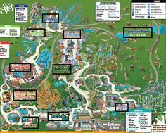 Seductive Busch Gardens Tampa  Amusements  Pinterest  Gardens Dr Who  With Lovable Review And Walk Through Of Busch Gardens Tampa With Astonishing Olive Garden Also Garden Of Evil Movie In Addition How To Make A Cheap Garden Path And Solid Oak Garden Furniture As Well As Evergreen Garden Additionally English Country Garden Flowers From Pinterestcom With   Lovable Busch Gardens Tampa  Amusements  Pinterest  Gardens Dr Who  With Astonishing Review And Walk Through Of Busch Gardens Tampa And Seductive Olive Garden Also Garden Of Evil Movie In Addition How To Make A Cheap Garden Path From Pinterestcom