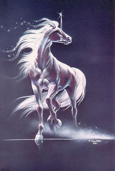 velvet unicorn