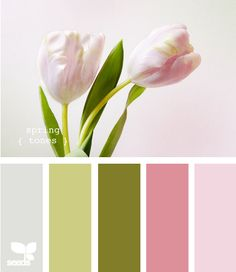 spring tones  @Sara Costa, kind of like this for a kitchen...the grey and greens being more prominent and the pinks only coming up as accents