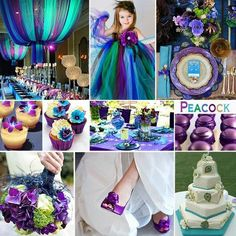 #peacockcolors #weddings #colorpalettes