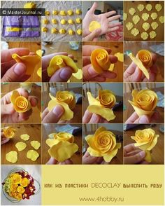 Rose - step by step