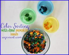 Color Sorting with Dyed Pumpkin Seeds from Sugar Aunts