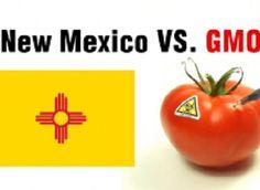 New Mexico GMO labeling bill heads for state legislature. http://www.foodnavigator-usa.com/Regulation/New-Mexico-GMO-labeling-bill-heads-for-state-legislature