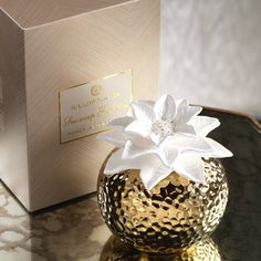 Snowcap Poinsettia Porcelain Diffuser Best Essential Oil Diffuser, Best Essential Oils, Aroma Diffuser, Poinsettia, Soap Dispenser, Fragrance, Gift Wrapping, Place Card Holders, Sachets