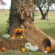 Popular Fall Outdoor Decorating Ideas That Looks Cool 48 Fall Yard Decor, Front Yard Decor, Porche Halloween, Vides, Autumn Garden, Fall Diy, Autumn Theme, Porch Decorating, Decorating Ideas