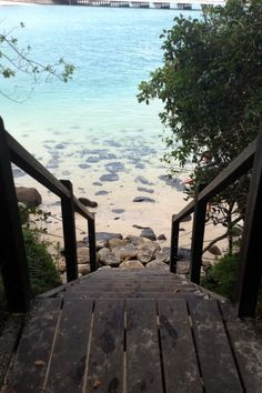 裏 wish these steps led to my back yard!