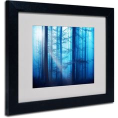 Trademark Fine Art Light Box Blues Canvas Art by Philippe Sainte-Laudy, Black Frame, Size: 16 x 20, Multicolor